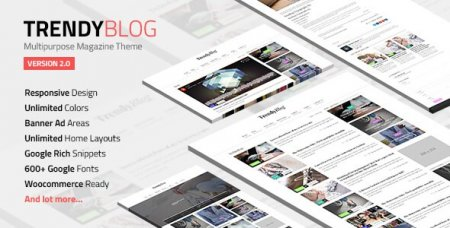 TrendyBlog - многоцелевой блог шаблон WordPress