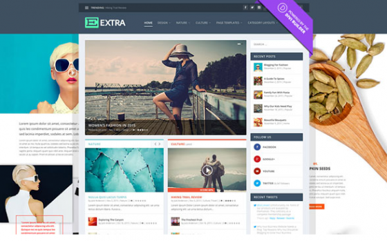 Extra v2.0.50 - шаблон WordPress для блогеров
