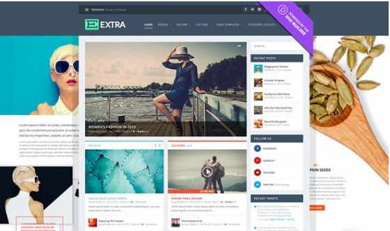 Extra v2.0.76 - Elegantthemes премиум Wordpress шаблон